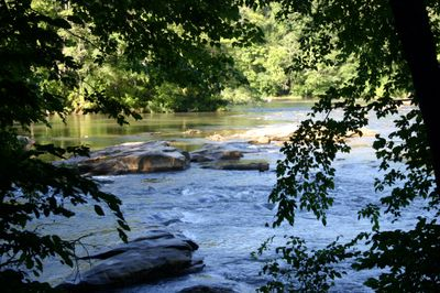 River chattahoochee