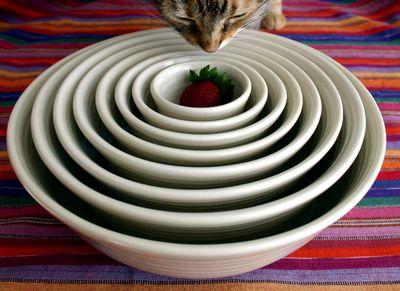 New bowls