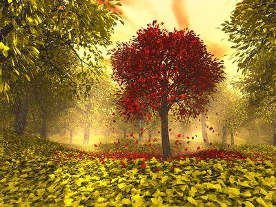 Autumn1600x1200