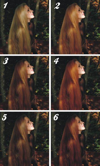 Hair - 6 colors