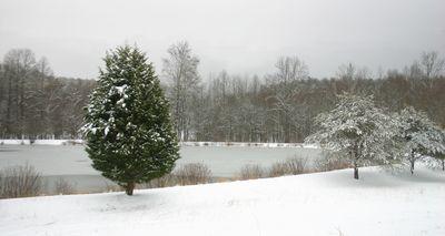 Snow 01-10-11 -3