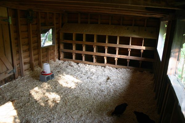Homemade Chicken Coop Plans