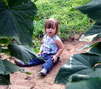 Margot and cucumber vines