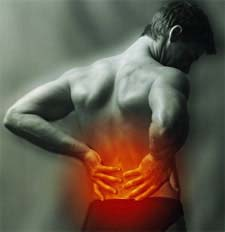 http://wahsegavalleyfarm.typepad.com/photos/uncategorized/2008/04/15/low_back_pain.jpg
