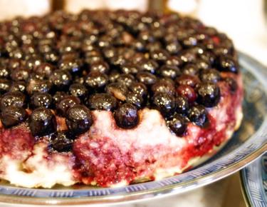 Blueberry_cake6