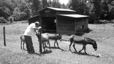 Mike_and_donkeys_bw